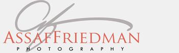 Assaf Friedman logo